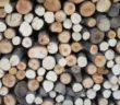 wood-1333966_960_720
