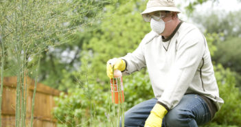 16080-a-man-spraying-a-pesticide-on-some-plants-in-his-garden-pv
