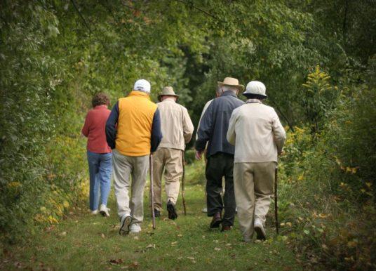 Senior, le bien-être de vivre ensemble en respectant l'environnement