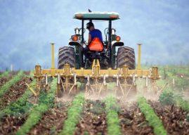 Taxation foncière agricole : l'Union paysanne s'adressera aux tribunaux