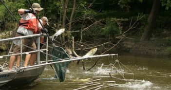 electrofishing-for-the-asian-carp-invasive-species-712x544