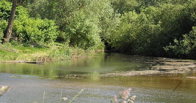 640px-Pagny-sur-Meuse_le_ruisseau_se_jette_dans_la_Meuse