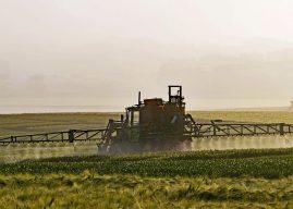 Règlement sur les pesticides : des moyens de contrôle à améliorer