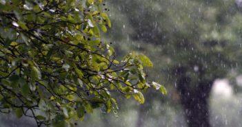 rain-829669_1280