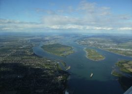 55 M$ pour protéger les espèces marines au Canada